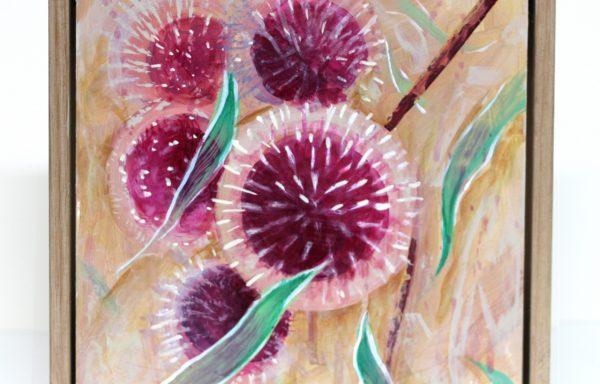 Original Painting 'Pink Pom Pom Hakeas'